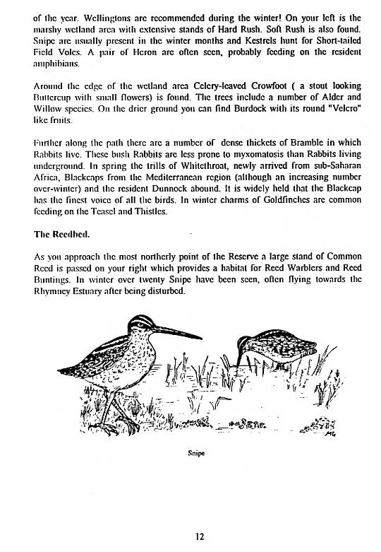 Howardian Local Nature Reserve   Nature Trail Booklet 1996 (English)   The Reedbed