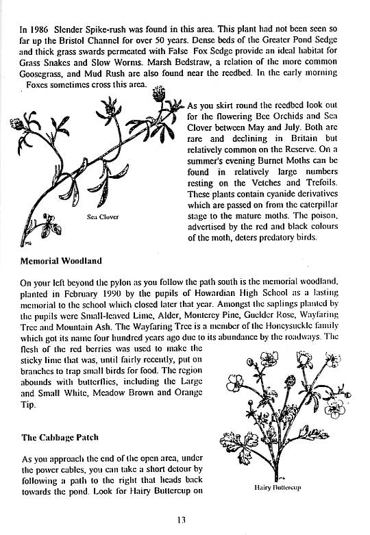 Howardian Local Nature Reserve   Nature Trail Booklet 1996 (English)   Memorial Woodland & The Cabbage Patch