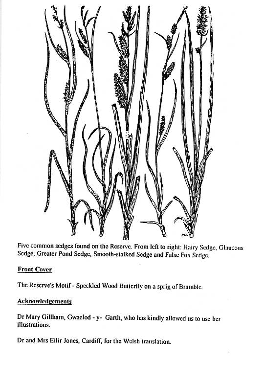 Howardian Local Nature Reserve   Nature Trail Booklet 1996 (English)   Sedges & Acknowledgements