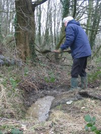 Howardian Local Nature Reserve      Digging out the drainage ditch
