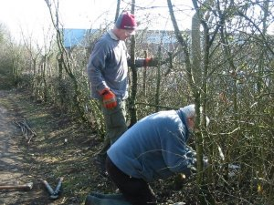 Howardian Local Nature Reserve 