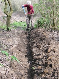 Howardian Local Nature Reserve      Digging out the channel