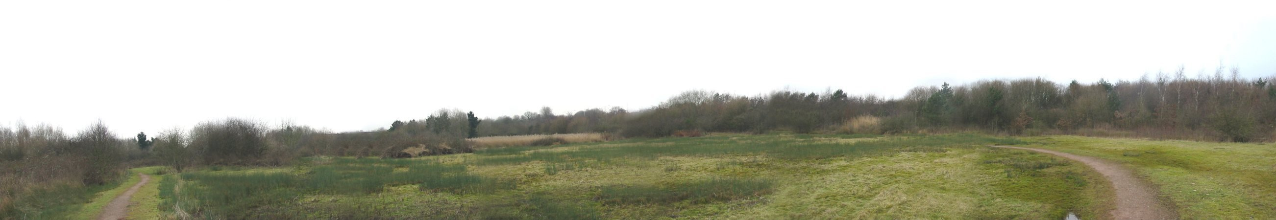 Scroll left and right