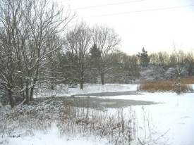 Winter wetland area