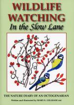 Wildlife Watching ~ In the Slow Lane