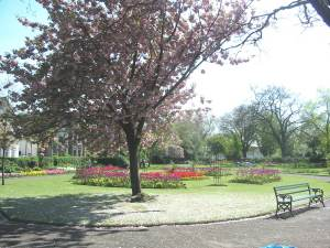 Waterloo Gardens